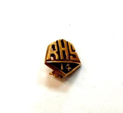 Pin (jewelry)
